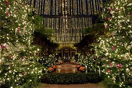 Longwood Gardens Christmas.Longwood Gardens Christmas Limos